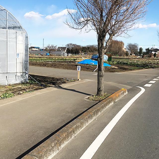 圏央道鶴ヶ島I.C(カインズ鶴ヶ島店)方面から鶴ヶ島運動公園前を通る道沿いにあります。矢印の道を左折してください。