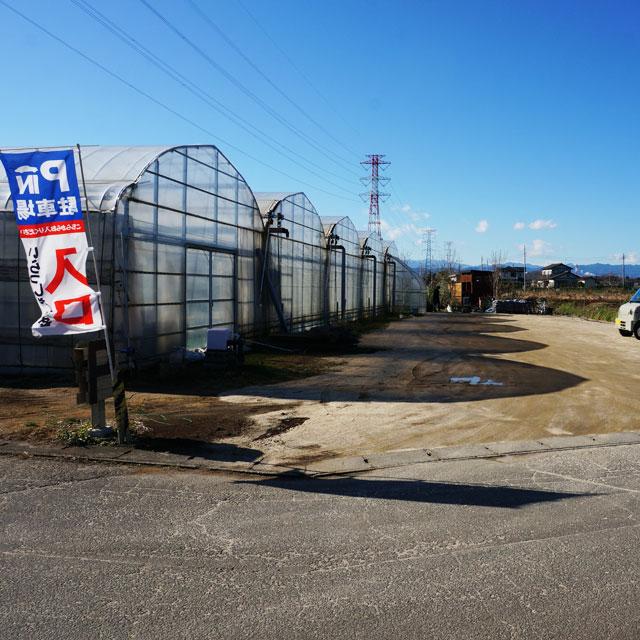 ビニールハウス沿いに進んでいただくと左手に当園駐車場があります。